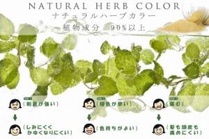 lino-herb-pop